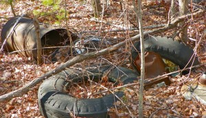 Staycations from Hell: Camping in the Woods Behind My Apartment