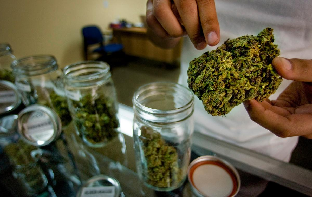 A Breakdown of California's Choice to Legalize Recreational Marijuana