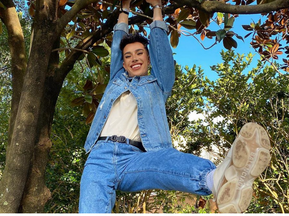 James Charles hanging from a tree.