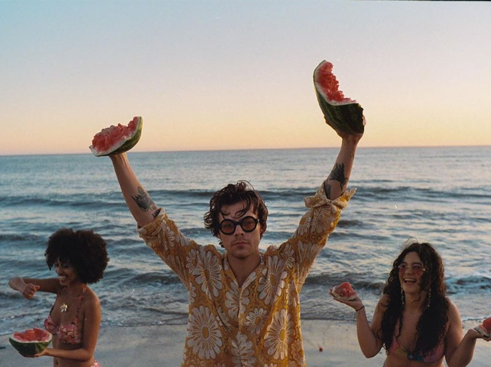 Harry Styles on the beach for his video Watermelon Sugar