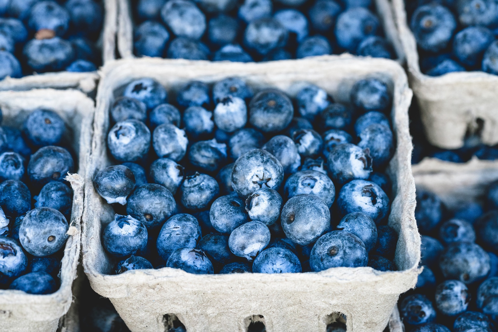 blueberries, sometimes used by people gambling to get an edge