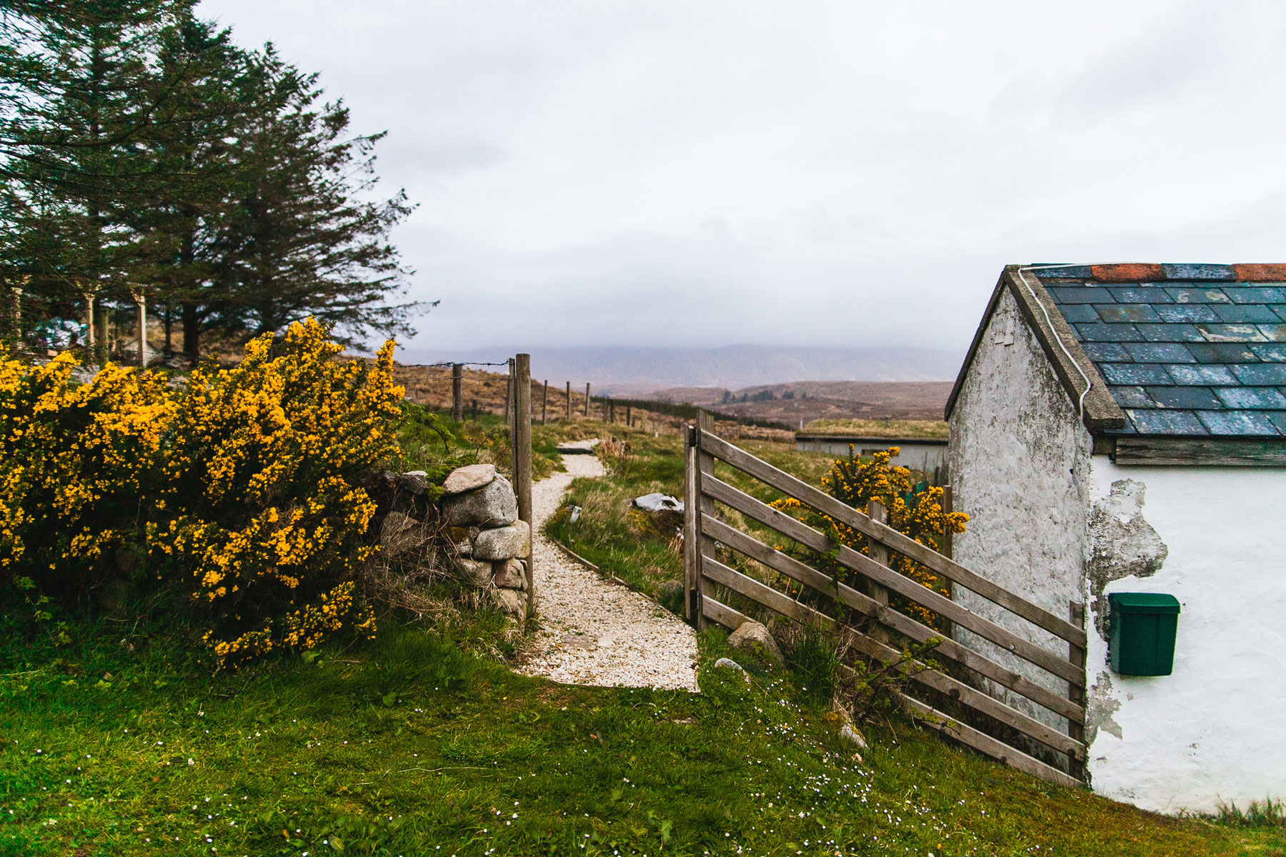 In an article about Irish immigrants, a photo of Irish countryside