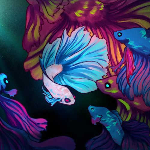 Illustration by Lucas DeJesus for an article on betta fish