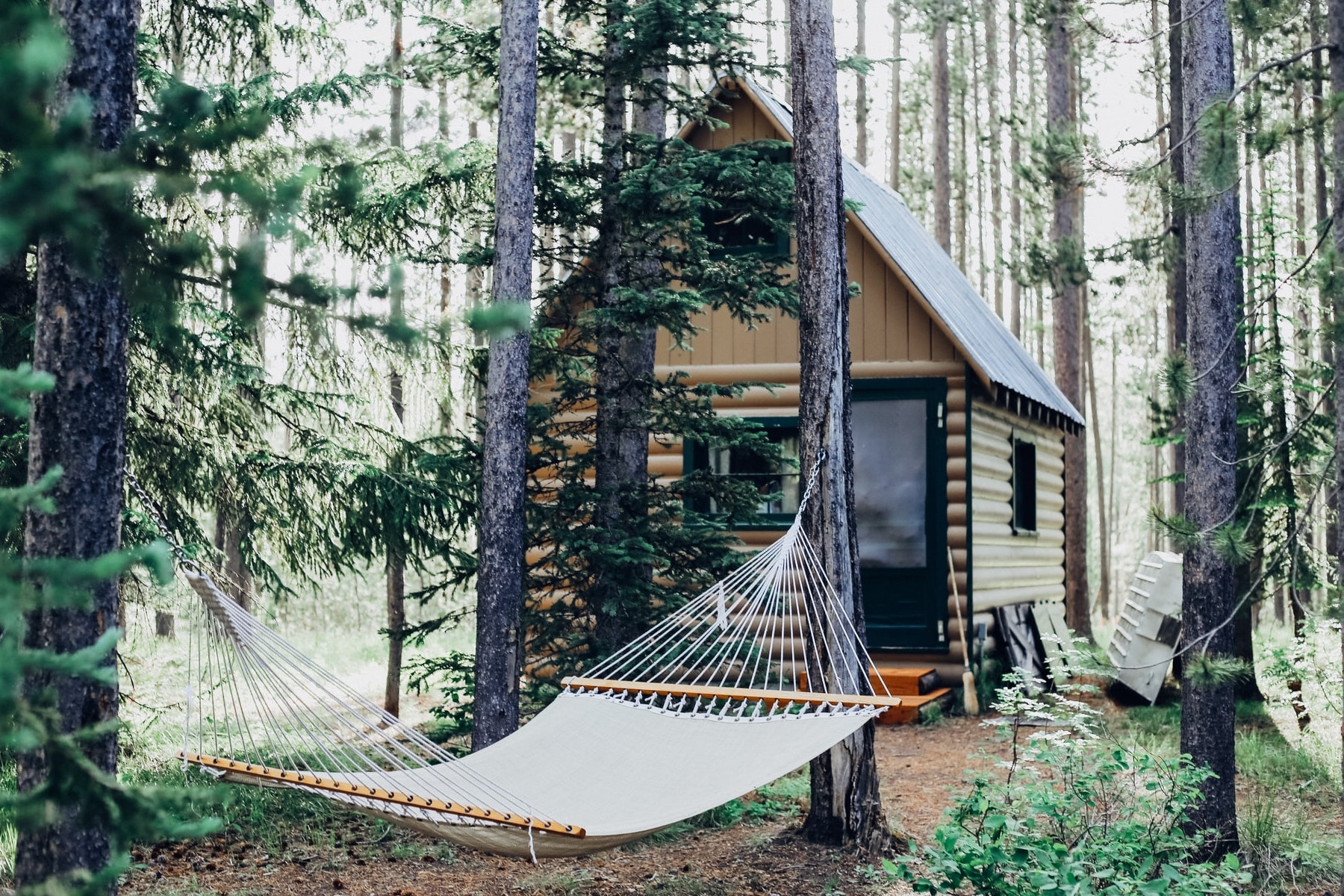 A photo of a cabin for an article about Getaway cabins and reconnecting with nature. (Photo by Cara Fuller from Unsplash)